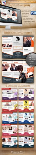 GraphicRiver - A4 Trifold Brochure Template PSD 6 Variations #1 - 2721119