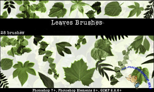Leaves Photoshop Brushes