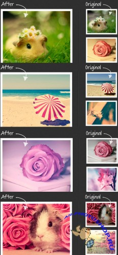 Photoshop Actions 2012 pack 781