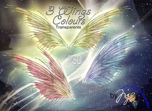 PSD Template - Wings Fantasy Colours