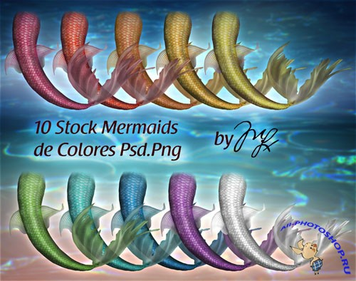 PSD Template - Mermaids Stocks