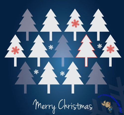 Vector Christmas Card Graphics