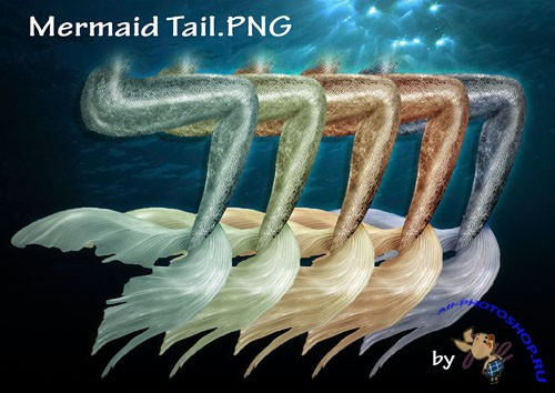 Mermaid Tail PNG Clipart