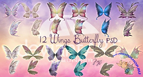 12 Wings Butterfly PSD Template