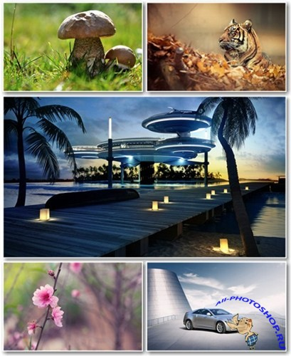 Best HD Wallpapers Pack №774