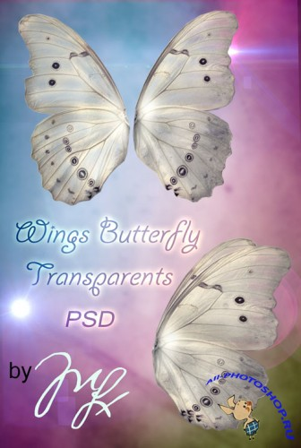 PSD Template - Wings Butterfly Transparents