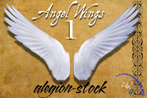 Angel Wings PNG Clipart #1