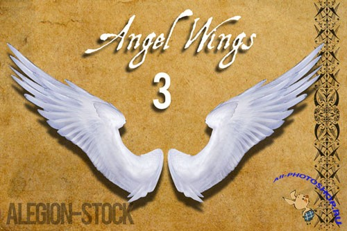 Angel Wings PNG Clipart #3