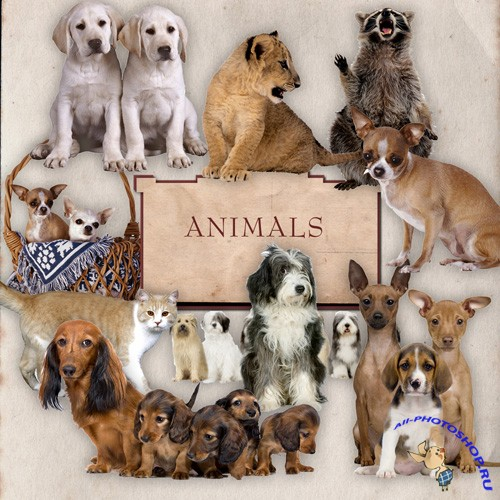 Scrap-kit - Little Dogs And Orher Animals