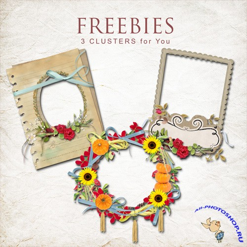 Scrap-kit - Cluster Frames With Flowers 3
