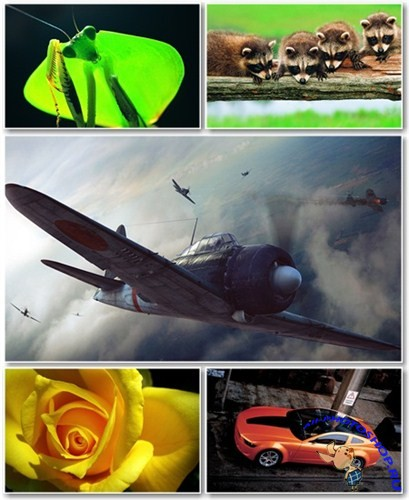Best HD Wallpapers Pack №816