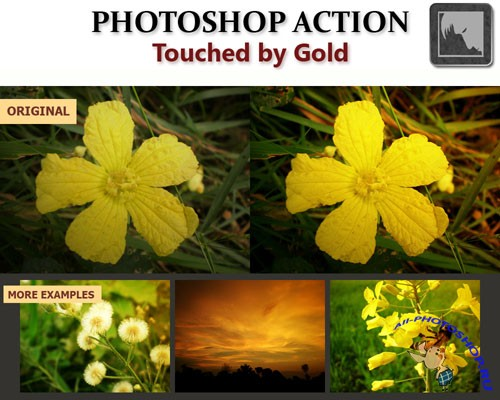 Touched by Gold Photoshop Action