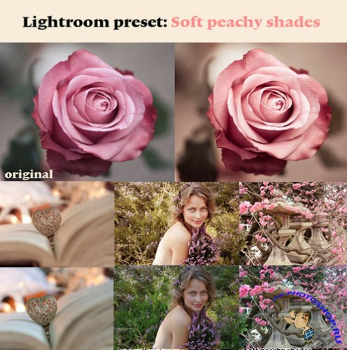 Soft Peachy Shades Photoshop Actions