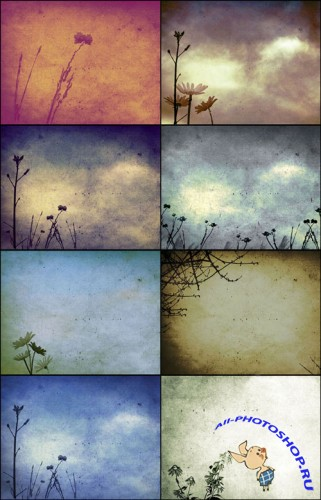 8 Floral Composite Textures + Brushes Set 1