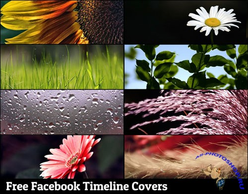 Facebook Timeline Covers Backgrounds
