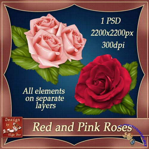 Red and Pink Roses PSD Template