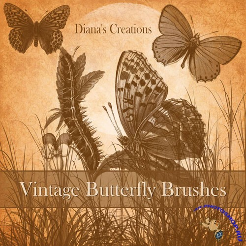 Vintage Butterfly Photoshop Brushes