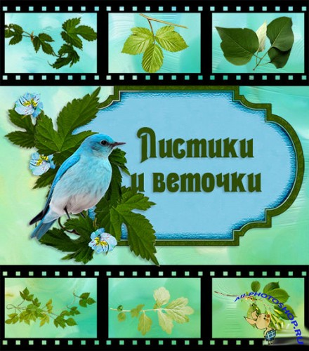 "Clipart ""Leaves and twigs""."