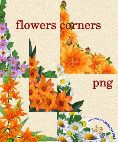 Flowers Corners PNG Clipart