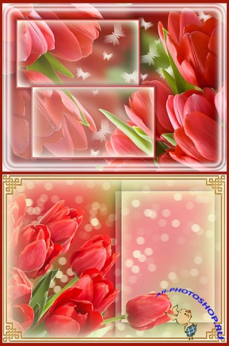 Floral Romance Tulips PSD Template