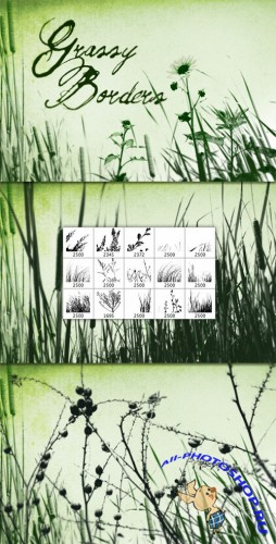 WeGraphics - Grass and Weed Borders