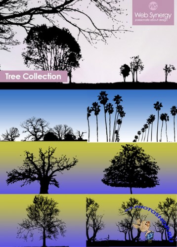 Tree PS Brushes Collection