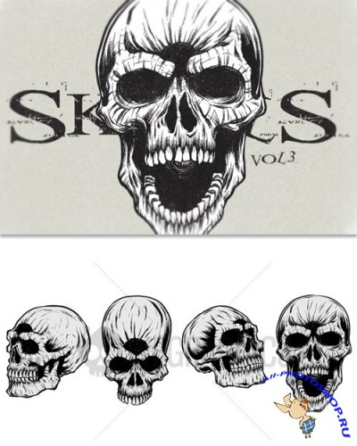 WeGraphics - Highly detailed skulls vol3