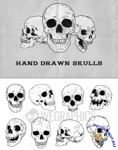 WeGraphics - Hand Drawn Skulls