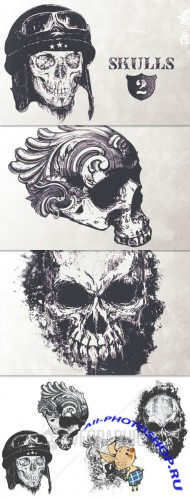 WeGraphics - Highly detailed skulls vol2