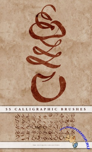 55 Calligraphic Brushes