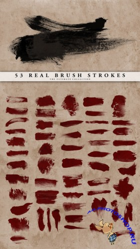 53 Real Brush Strokes Set