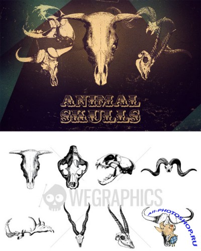 WeGraphics - Animal Skull vectors