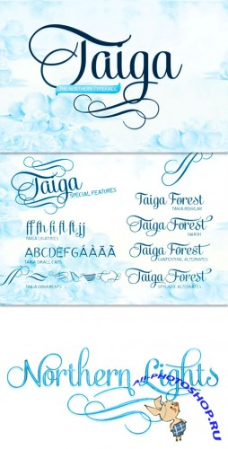 Exclusive Taiga Fonts