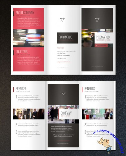 Pixeden - Corporate Tri Fold Brochure Template 2