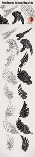 Designtnt - Feathered Wings PS Brushes