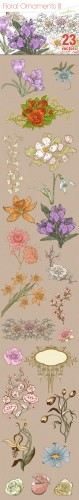Designtnt - Floral Ornaments Set 3