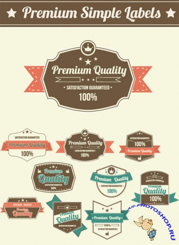 Designtnt - Premium Simple Labels