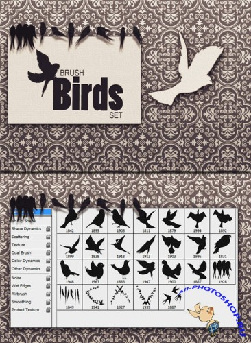 Designtnt - Birds PS Brushes