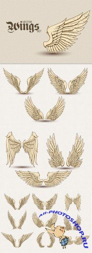 Designtnt - Detailed Vector Wings