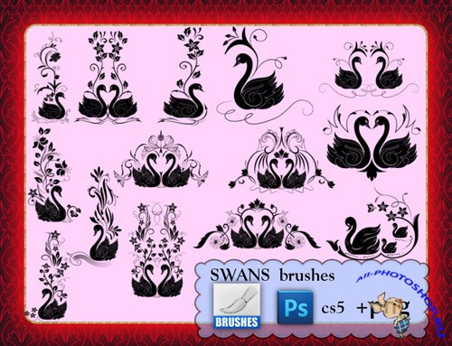 Swans Photoshop Brushes CS5