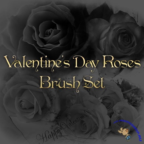 Valentine's Day Roses Photoshop Brushes