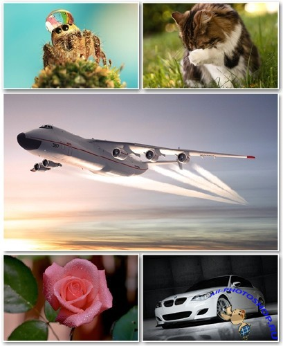 Best HD Wallpapers Pack №953