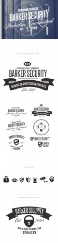 Security Logo Vector Templates