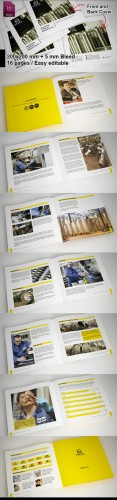 Industrial Brochure Highlights Template