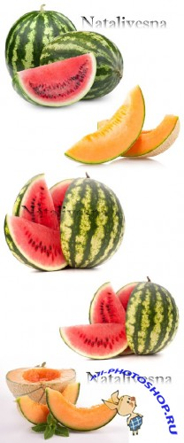 ��������� ���� � ����� �� ����� ���� / Melon and water-melon - Stock photo