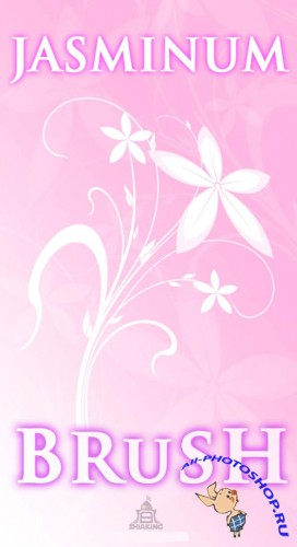 Jasminum Photoshop Brushes
