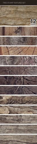 Designtnt - Tree Stump Textures Set 1