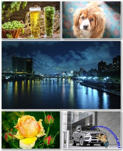Best HD Wallpapers Pack �1009