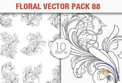 Floral Vector Pack 88