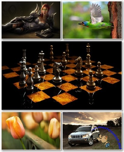 Best HD Wallpapers Pack №1068